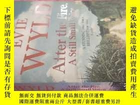 二手書博民逛書店【英文原版】After罕見the Fire, A Still Small Voice【 如圖】Y25633 E