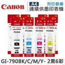 CANON 2黑6彩 GI-790BK+GI-790C+GI-790M+GI-790Y 原廠墨水 /適用Canon PIXMA G1000/G2002/G3000/G4000