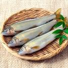 ㊣盅龐水產 ◇公香魚7隻裝◇ 920g±5%/盒 ◇ 零$300元/盒 魚肉鮮嫩 挑戰低價 團購 夯肉