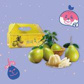 鶴岡文旦禮盒(一盒免運)(2019/9/2後可到貨)