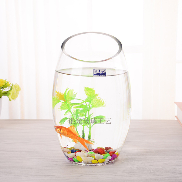 小型加厚創意橢圓形斜口透明玻璃水培植器皿擺件小魚缸金魚缸