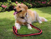 寵物繩狗練子牽引金毛中型大型犬狗狗免運直出 交換禮物