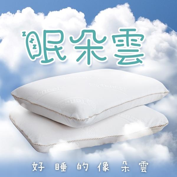 枕頭 / 釋壓枕【眠朵雲-超釋壓深度睡眠枕】針織緹花天絲表布 戀家小舖台灣製AEC203