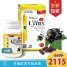 【台灣康醫】 康富 C++ Lutein3黑醋栗金盞花萃取物(500mgX60顆) 金盞花 山桑子 藍莓 黑醋栗