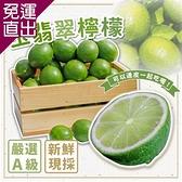 菊頌坊 玉翡翠檸檬 5斤裝x4盒【免運直出】