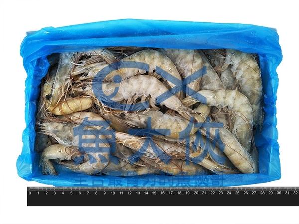 1C4B【魚大俠】SP030特美生白蝦30/40 保證實重1.1kg #2