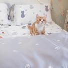 天絲床組 紫色貓月 Q4雙人加大薄床包與...