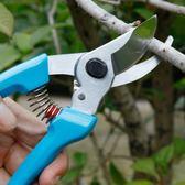 園藝剪刀修剪樹枝剪刀園林工具花剪修枝剪子果樹剪花枝剪刀粗枝剪