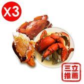 【微晶冷凍】野生鮮凍沙公蟹(大組)-電電購