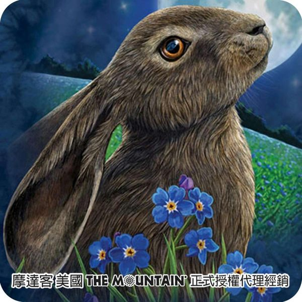 【摩達客】(預購)(男童/女童裝)美國進口The Mountain 兔子望月 純棉環保短袖T恤(10416045083a)