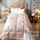 棉被 / 單人【天然水鳥羽絲絨被-粉色】輕盈透氣 蓄熱保暖 戀家小舖台灣製ADB100