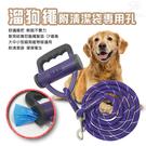 金德恩 LIXIT寵物用品犬類牽引尼龍繩/隨機色