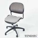 椅墊-TENDAYs 車用/辦公減壓椅墊(車辦兩用)(出遊必Buy)