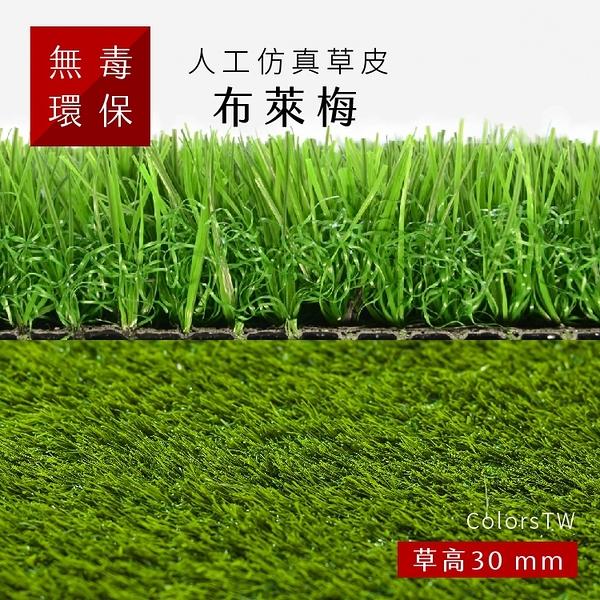 人工仿真草皮 【布萊梅】 尺寸1X1m 人工草皮 人造草皮 拼接 園藝 景觀
