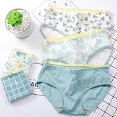 MUMU【TM00755】夏季小清新中腰棉質內褲。五色