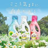 日本 P&G Bold 香氛柔軟洗衣精 850g/800g 洗衣精 柔軟精 抗菌 除臭 消臭 香味 清潔 香氛