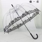 個性創意樹葉透明傘阿波羅傘玫瑰花長柄傘