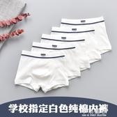 學校指定兒童內褲白色純棉男童全棉短褲純白色學生四角褲『小淇嚴選』