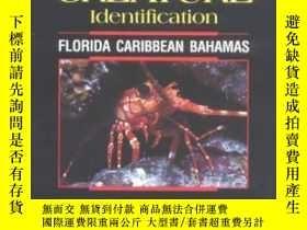 二手書博民逛書店Reef罕見Creature IdentificationY255562 Humann, Paul  Delo