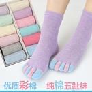 五指襪女 全棉中筒彩指襪子 分腳趾休閒襪子 禮盒裝  【快速出貨】