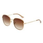 【FILA 斐樂】經典復古方框太陽眼鏡-茶棕色/7338-NU/台灣總代理公司貨