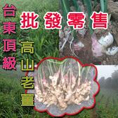 台東高山帶土,老薑,生薑,大薑,最低價,最辣,最好品質,兩年特等老薑(台斤)