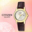 CITIZEN 星辰手錶專賣店 FE1082-13A 女錶 Eco-Drive光動能 日系 小牛皮錶帶 平面水晶玻璃錶鏡 防水30米
