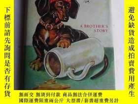 二手書博民逛書店Animal罕見Magic: A Brother s Story