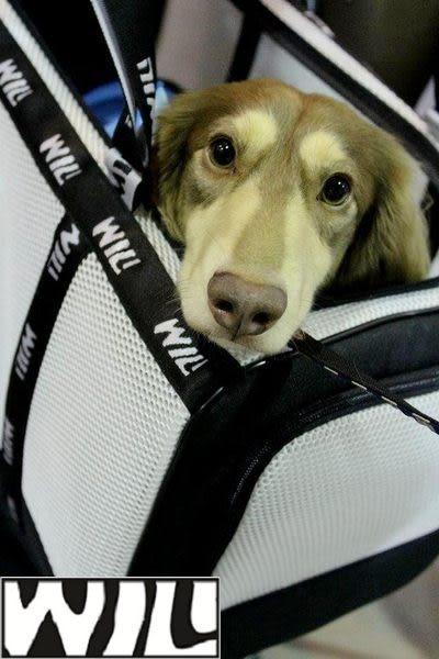 WILL設計+寵物用品*消暑涼涼款*超透氣 寵物 提籃 / 袋 / 外出包☆中型犬愛用☆白網x黑