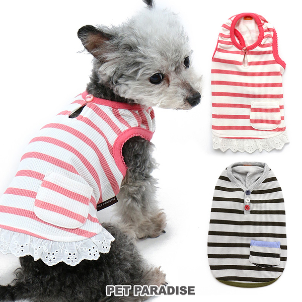 【PET PARADISE 寵物精品】 PP 條紋棉質背心/2色 (3S/DSS/SS/DS/S) 寵物衣服