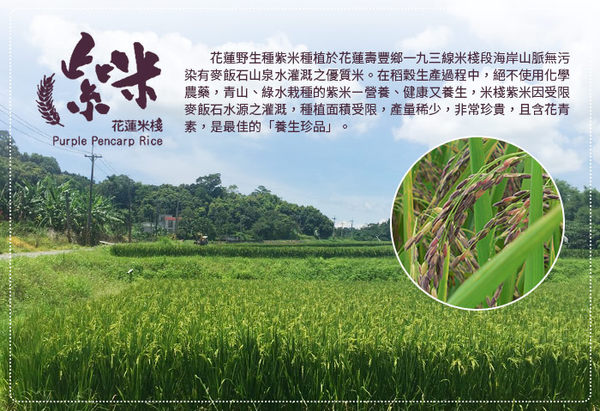 《好客-米棧》花蓮有機花青素米(紫米) (1kg/包)(免運)_A040003