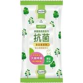 貝恩Baan潔膚抗菌柔濕巾30抽x60包 2099元(手口臉專用) (有效抗菌配方)