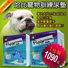 【哈比狗狗】寵物訓練尿布墊72片/兩包裝(超吸水狗尿布)