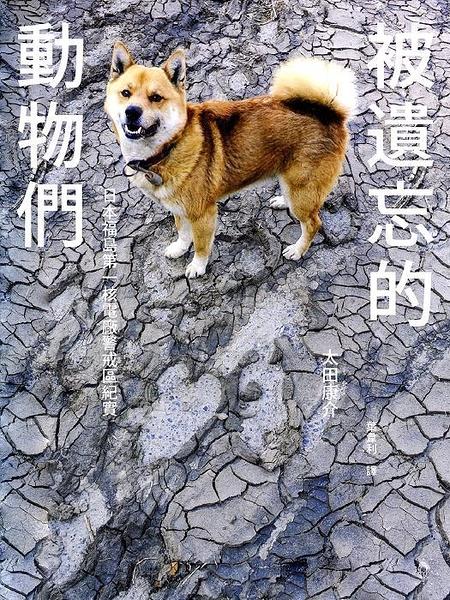 (二手書)被遺忘的動物們:日本福島第一核電廠警戒區紀實