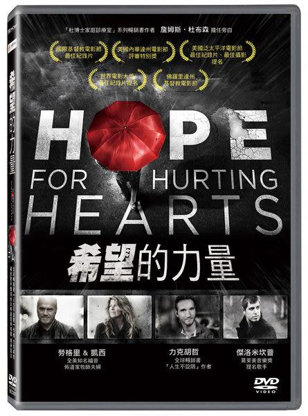 希望的力量 DVD (音樂影片購)