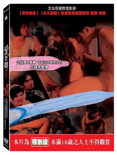 愛很爛 DVD (購潮8) 4717964774064