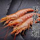 ㊣盅龐水產 ◇20/30生食級天使紅蝦L...