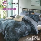 【R.Q.POLO】使用3M吸濕排汗X萊賽爾天絲 薄被套床包四件組-單人/雙人/加大 均一價(千葉)