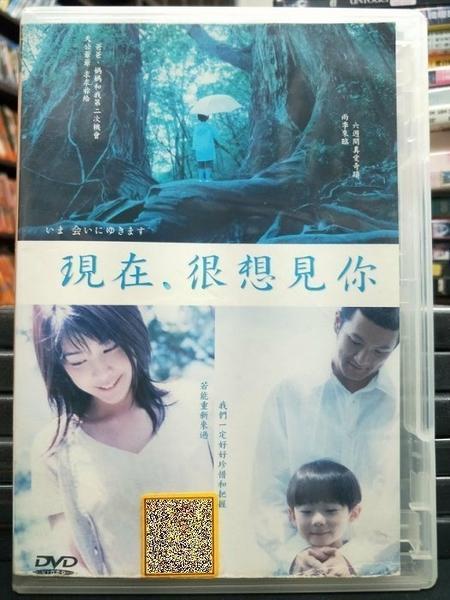 挖寶二手片-P53-006-正版DVD-日片【現在很想見你】-竹內結子 中村獅童(直購價)