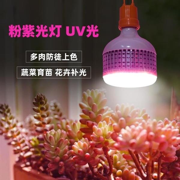 植物補光燈 多肉補光燈led全光譜綠植物生長燈蔬菜花卉補光家用仿太陽上色燈 裝飾界 免運