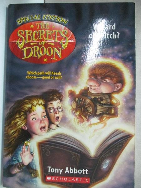 【書寶二手書T3/原文小說_HH1】Wizard or Witch_Abbott, Tony/ Merrell, David (ILT)