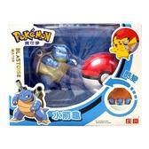 精靈寶可夢 Pokemon 變形系列 水箭龜 寶貝球 酷變 庄臣 正體中文 代理版 TOYeGO 玩具e哥