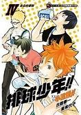 排球少年!! 小說版!! Ⅳ