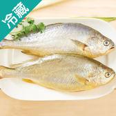 【愛買嚴選】黃魚2尾(300~400g/尾)【愛買冷藏】