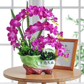 蝴蝶蘭仿真花套裝蘭花假花盆景擺設室內客廳辦公室裝飾品盆栽擺件 YXS『小宅妮時尚』