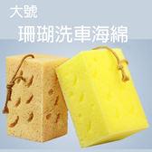 大號珊瑚洗車海綿 16.5x10x9cm 擦車海綿 蜂窩海綿 清潔海綿