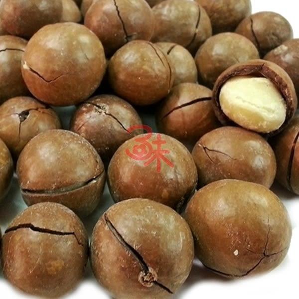 (澳洲) 烘焙 帶殼夏威夷豆 夏威夷 火山豆 附贈剝殼器 1包 600 公克