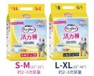 【醫博士】安親貼身舒適活力褲 S-M / L-XL (二箱加送PE手套一盒)