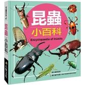 兒童百科:昆蟲小百科(典藏新版)