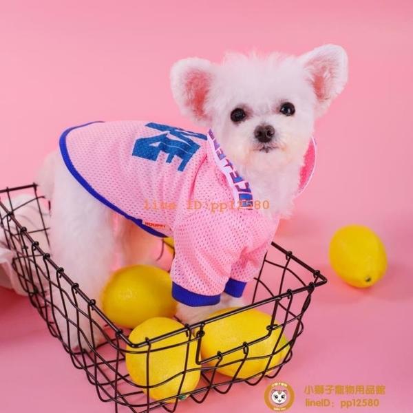 衣服泰迪比熊小鹿犬夏季夏天薄款防曬寵物的背心小型犬小狗狗【小獅子】